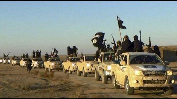 Isis:Raqqa,allerta Italia su combattenti