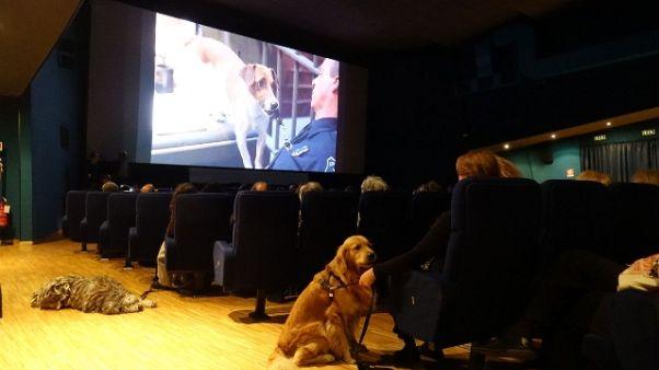 In sala col cane,iniziativa Museo Cinema