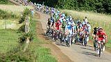 Le peloton lors des Championnats de France de cyclisme, le 26 juin 2015 près de Vesoul