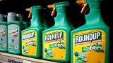 EU delays decision on licence for weedkiller glyphosate