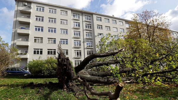 Strong winds batter central Europe, killing two in Czech Republic