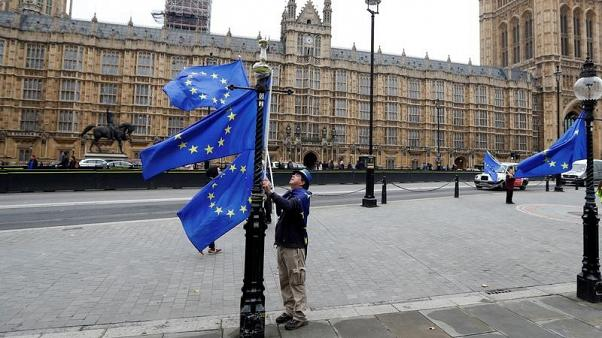 FILE PHOTO: An anti Brexit protester adjusts his EU flags outside the Houses of Parliament in London, Britain October 19, 2017.  REUTERS/Peter Nicholls/File Photo