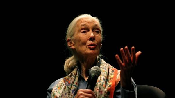 Conservationist and primatologist Jane Goodall talks during her conference at the National Geographic summit in Lisbon, Portugal May 25, 2017. REUTERS/Rafael Marchante