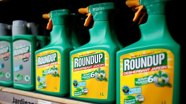 FILE PHOTO: Monsanto's Roundup weedkiller atomizers are displayed for sale at a garden shop at Bonneuil-Sur-Marne near Paris, France on June 16, 2015.   GLYPHOSATE  REUTERS/Charles Platiau/File Photo