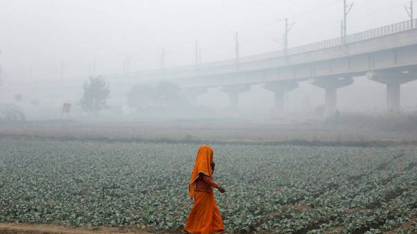 A woman walks across a field on a smoggy morning in New Delhi, India, November 13, 2017. REUTERS/Saumya Khandelwal