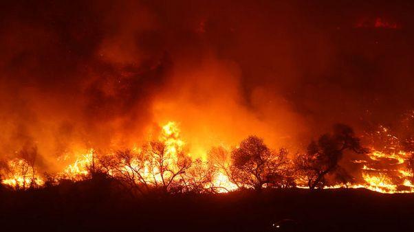 السلطات تطالب سكان جنوب كاليفورنيا بالاستعداد للإجلاء مع اشتداد حرائق الغابات