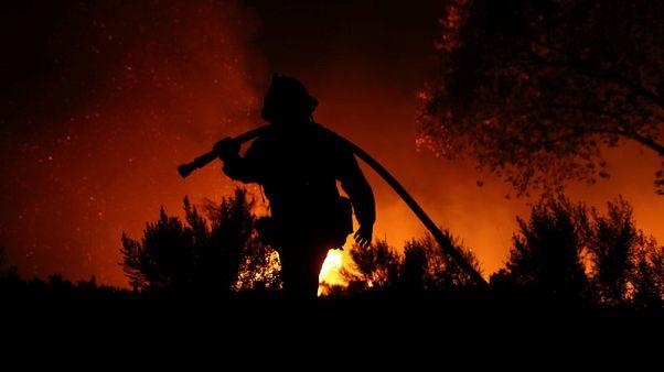 ترامب يعلن الطوارئ لمكافحة حرائق غابات في كاليفورنيا