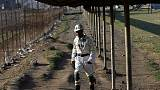 South Africa's Sibanye-Stillwater to buy troubled platinum producer Lonmin