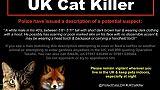 Qui arrêtera le tueur en série de chats du sud londonien?
