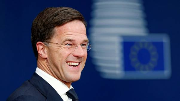 Euro zone needs 19 healthy economies, not special budget - Dutch PM