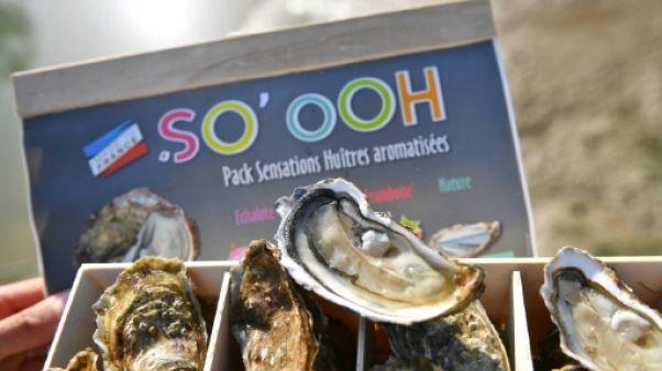Première mondiale sur le bassin de Marennes: des huîtres parfumées