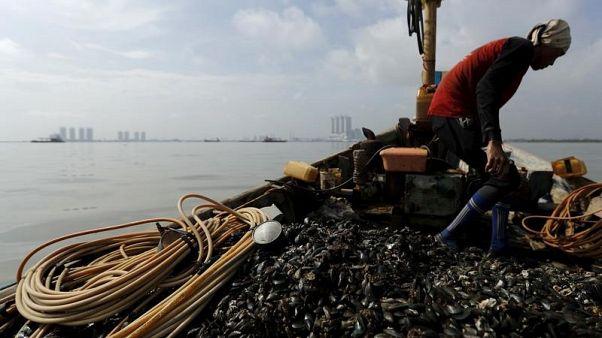 العثور على جزيئات بلاستيك في بلح البحر من القطب الشمالي حتى الصين