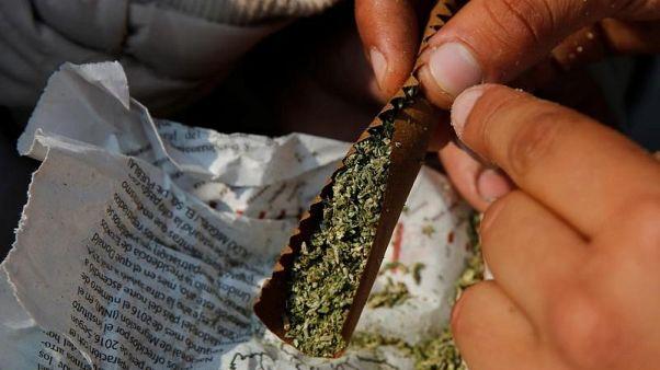 المكسيك تجيز بيع المنتجات التي تدخل في صناعتها الماريجوانا العام القادم