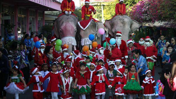 أفيال ترتدي زي بابا نويل تنشر بهجة عيد الميلاد في مدرسة تايلاندية
