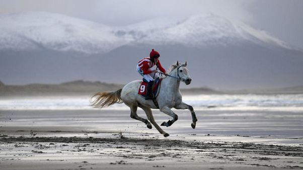 Irish coastal village hosts annual beach horse races