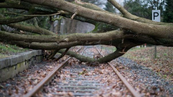Tempête: 9 morts dans le nord de l'Europe et chaos dans les transports