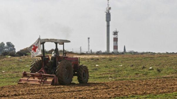 Des fermiers de Gaza cultivent à la frontière d'Israël, une première depuis 2006