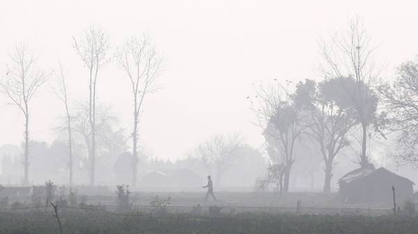 Image result for India's $230 million plan to stop crop burning that pollutes Delhi falls short of estimates