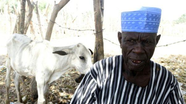 """Dans le centre du Nigeria, agriculteurs et éleveurs """"ne peuvent plus"""" vivre ensemble"""