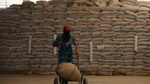 مصدر حكومي: سوريا تلغي مناقصة لشراء 300 ألف طن من القمح