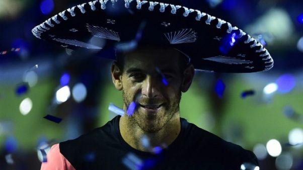 Tennis: Del Potro s'impose en finale à Acapulco face à Anderson