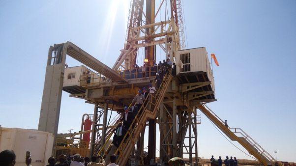 الرئيس التنفيذي: جينل قد تبدأ عمليات الحفر بأرض الصومال في 2019