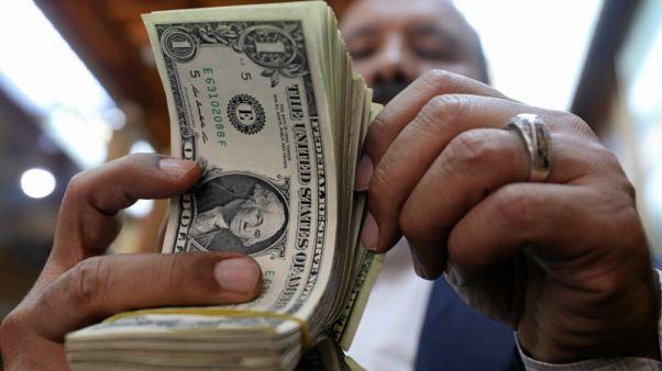 مصر تثبت الدولار الجمركي عند 16 جنيها في أبريل