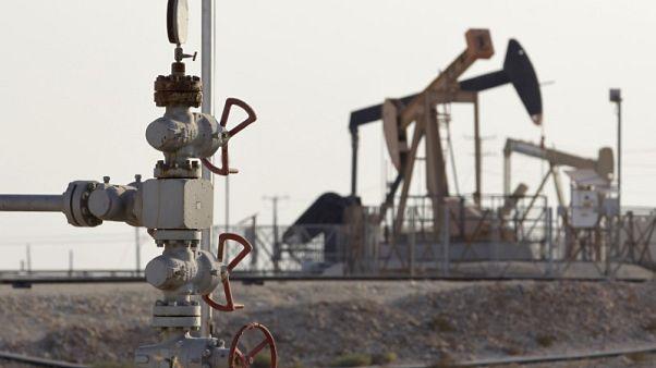 البحرين تكتشف أكبر حقل نفطي لها في عقود