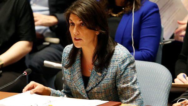 هيلي: أمريكا سترد على الهجوم في سوريا بصرف النظر عن موقف مجلس الأمن