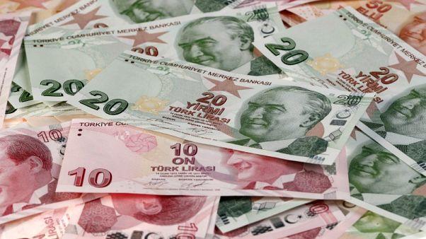 الليرة التركية تهبط لمستويات قياسية منخفضة جديدة