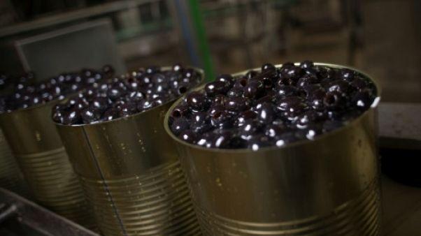 Les olives d'Andalousie, l'autre guerre commerciale qui couve