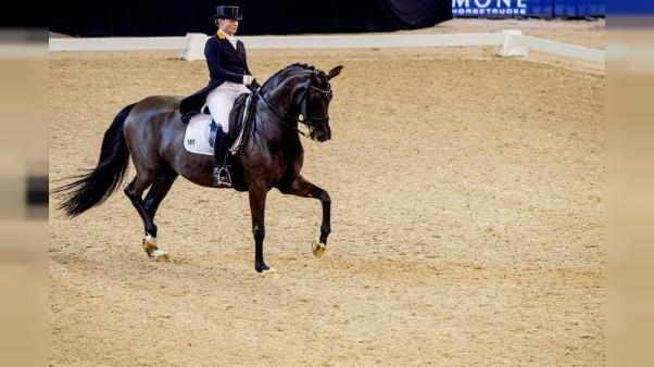 Equitation: Isabell Werth conserve le Grand Prix freestyle