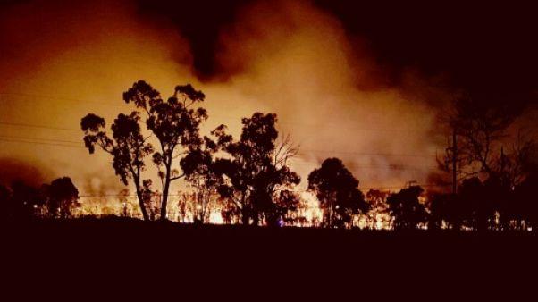 Australie: un incendie de forêt fait rage à Sydney