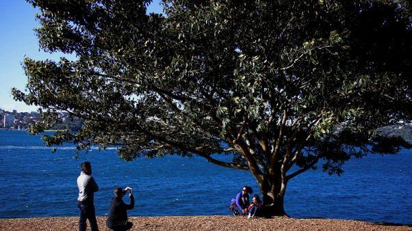 الصين تتقدم على نيوزيلندا من حيث التدفق السياحي إلى استراليا