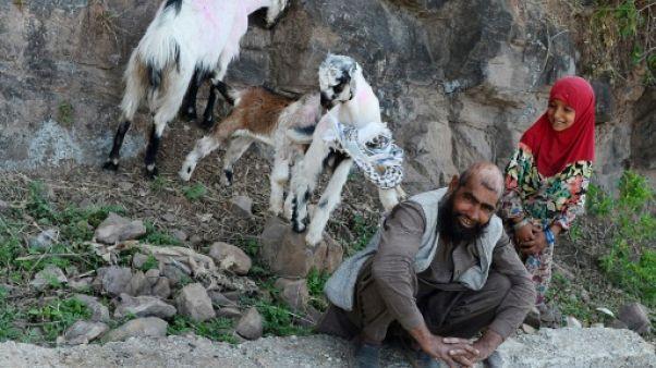 Après le viol collectif, la funèbre transhumance des nomades du Cachemire indien