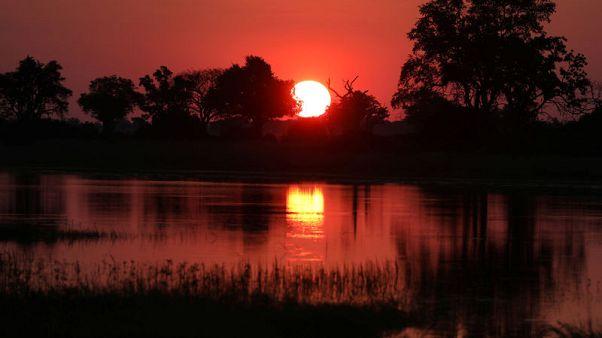 تحت ظلال أشجار بوتسوانا.. تعمق الحب بين الأمير هاري وميجان ماركل