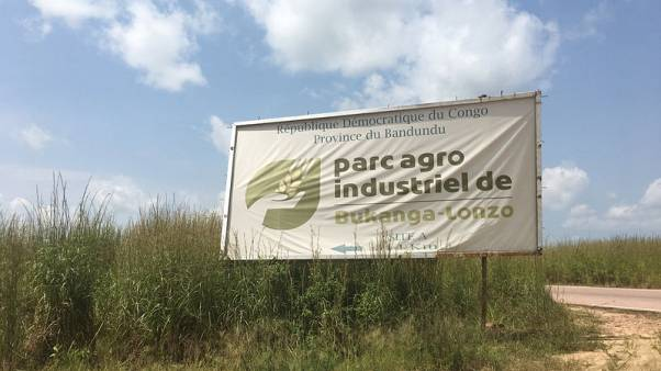Africa's green revolution stumbles at Congo project to solve food shortages