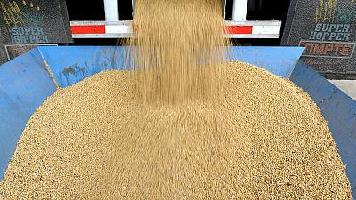 China signals to state giants - 'Buy American' oil and grains