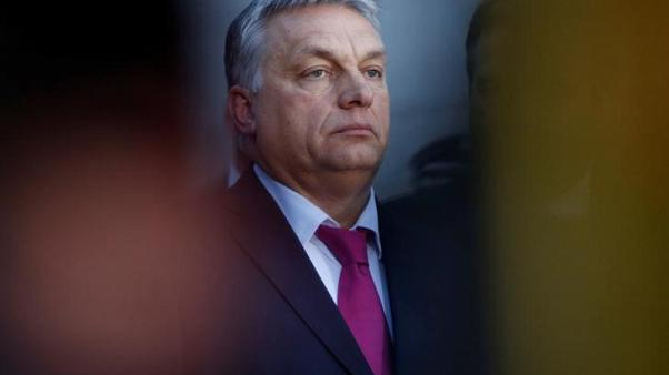 Hungary will defend traditional families, stop demographic decline, Orban says