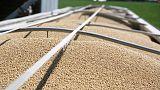 'Hi, I'm a soybean' - In trade war, China deploys cartoon legume to reach U.S. farmers