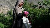 Une Afghane cueille des roses, le 24 avril 2018 près de Jalalabad