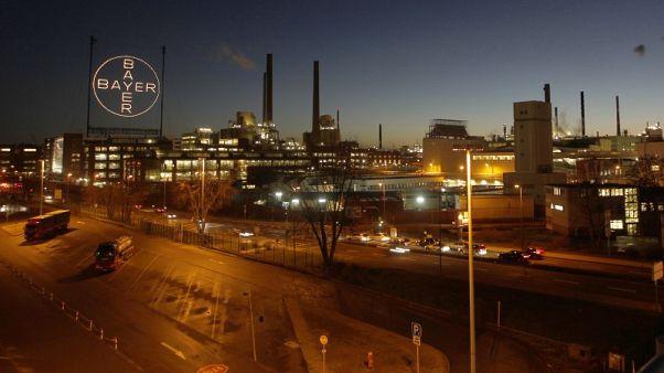German economy showed improved momentum in Q2: Bundesbank
