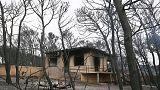مسؤول محلي: أكثر من 60 قتيلا في حرائق الغابات باليونان