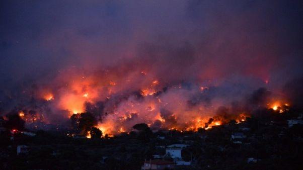 Un feu de forêt près d'Athènes, le 23 juillet 2018