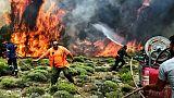 La Grèce en deuil poursuit son combat contre les incendies meurtriers