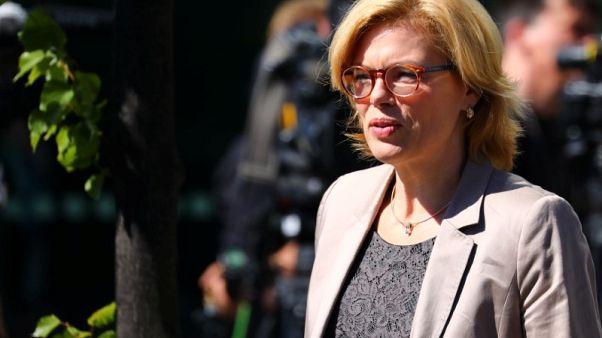 Higher U.S. soy imports won't harm EU farmers - German minister