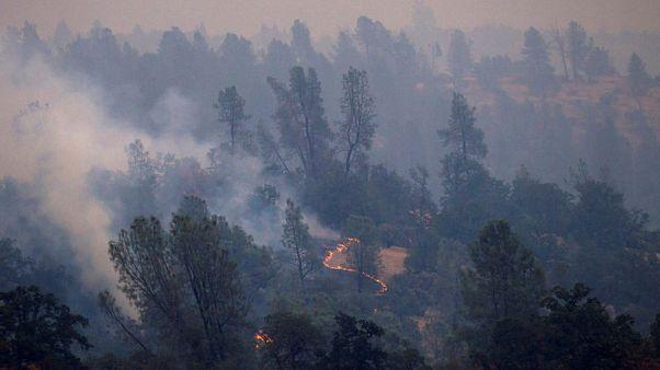 ارتفاع عدد قتلى حرائق غابات كاليفورنيا إلى 6 أشخاص