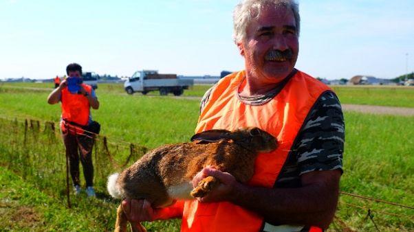 A Orio 'caccia alla lepre' per sicurezza