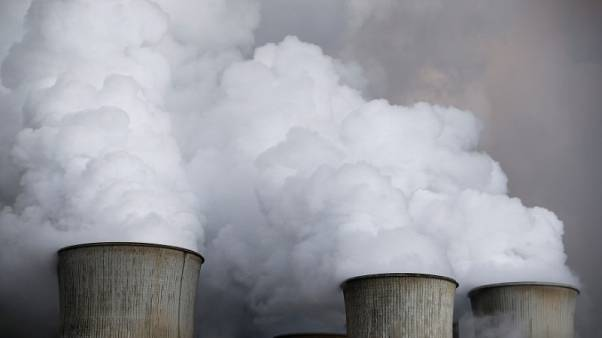 Analysts raise EU carbon price forecasts as market reforms begin to bite