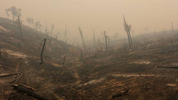 مصحح-هدوء الرياح يجدد الأمل في مكافحة حرائق كاليفورنيا